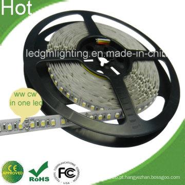 SMD3528 120LEDs / Medidor LED Cct Faixa de LED ajustável com CE, RoHS