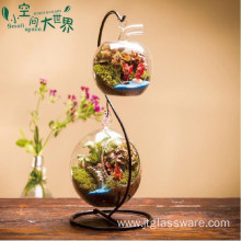 Handwork Art Glass Terrarium