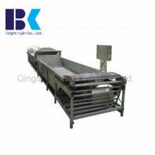 Máquina do encanamento da pasteurização do tipo da barra do rolo