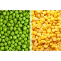 IQF Frozen Mixed Vegetables with Competitive Price
