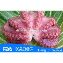 Замороженный большой осьминог из фарфора