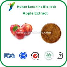 Proveedor de fábrica chino piña de extracto de fruta