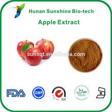 Chinese factory supplier fruit extract pineapple