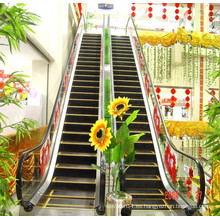 2015 Escaleras mecánicas para exteriores de productos nuevos