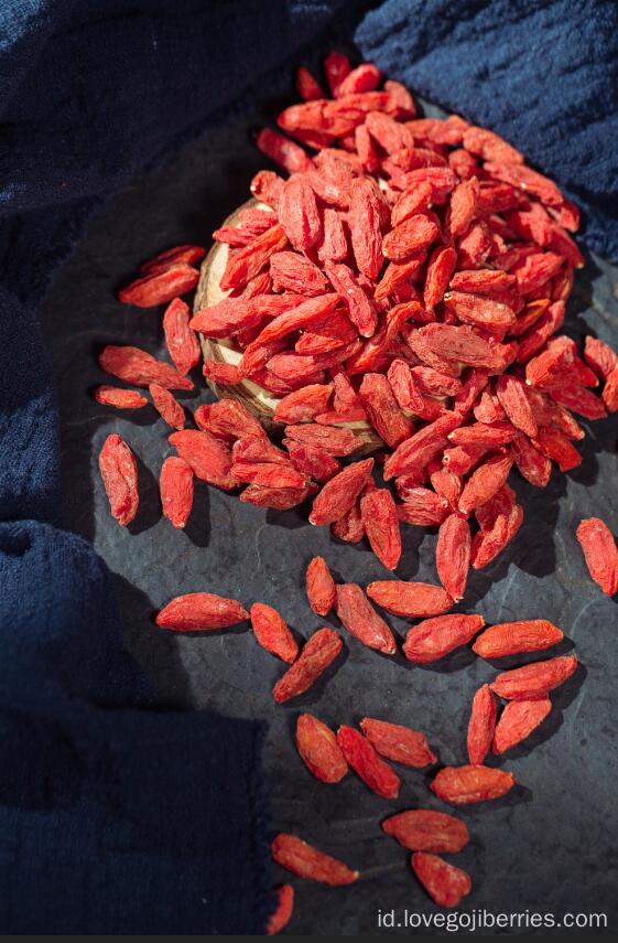 Pestisida Rendah Goji Berries Ningxia Asli