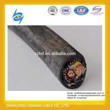 1100V XLPE o PVC aislaron el cable de cobre concéntrico de NYCY 2x6mm2