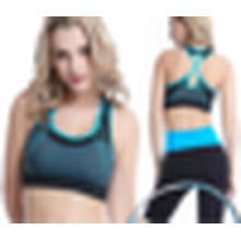 New Arrival Sexy Crane Seamless Outdoor Sport Underwear Fashionable Designer Sports Bra for Women