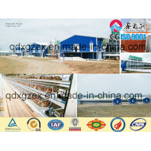 Maison de poulet à structure professionnelle en acier (CH-16134)