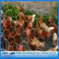 Q195 Hexagonal Chicken Wire Mesh
