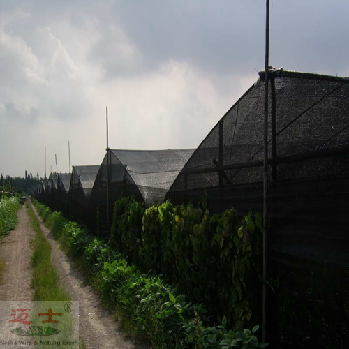 Prix ​​d'usine Sun Shade Net high quality