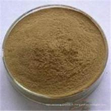 Cordyceps sinensis extrait polysaccharide