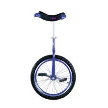 Unicycle (WJ278222)