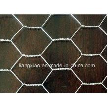 Hexagona Gabion Mesh/Driveway Paving Stone Mesh (HPZS3006)