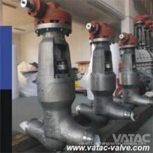 Wcb-, Wcc-, Wc6-, Wc9-, C5-, C12-, Lcb- und Lcc-druckdichtes Motorhaubenventil mit RF- oder Bw-Enden