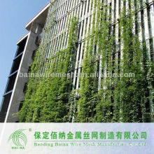 green wall stainless steel net mesh