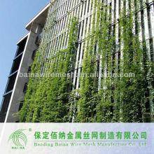 Malha de rede de aço inoxidável de parede verde