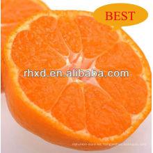 precio de mandarina satsuma fresca / traducir mandarina fresca de indonesia