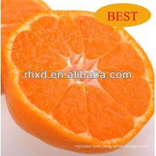 fresh satsuma mandarin price/translate indonesia fresh mandarin