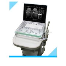 MSLPU25K Veterinär-Ultraschall für Kuh