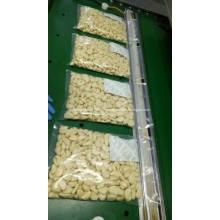 Ail de Jinxiang pelées fraîches