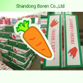 2015 New High Quality Fresh Organic Carrots