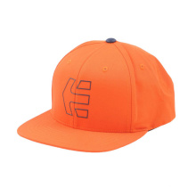 Flache Lederkrempe Metallplatte Snapback Cap