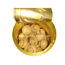 Canned Button Mushroom Suitable for Any Market with Different Drained Weight