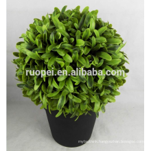 bonsai tree plant / artificial grass ball tree