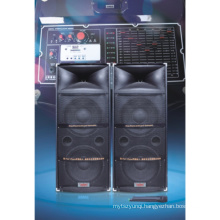 Cheapest Professional Stage Speaker with Big Power