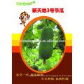 Suntoday para plantar uma semente de imagem vegetal empresa heriloom Sementes de cera orgânica para colocar sementes chieh-qua (22001)