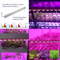 сад парниковых высокой Ra97 Сид cri гидропоники растут система