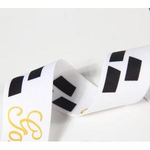 Custom Nylon Ribbon with Logo and Picture Printed Elastic