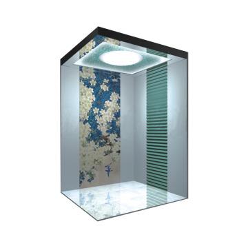 Sicher Small Machine Room High Quality Apartment Elevator