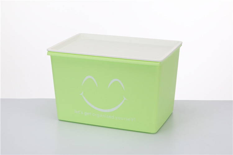 portable plastic storage bins