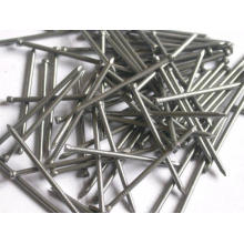 Anping Good Quality Galvanized Brad Finish Nail Price