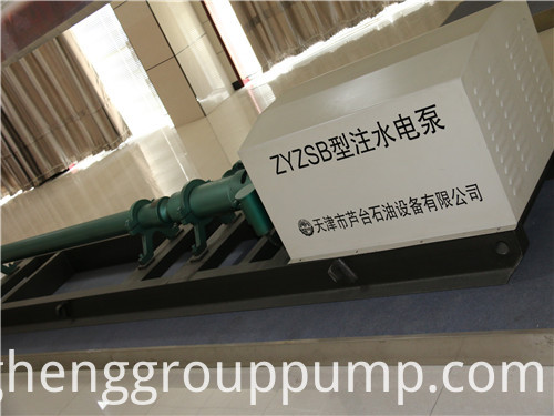 Horizontal pressurized water injection pump