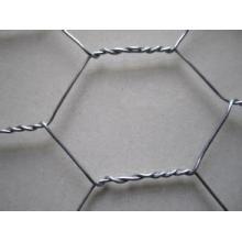 Maillage métallique hexagonal galvanisé / PVC moulé hexagonal