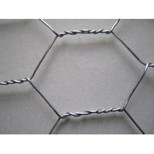 Galvanized Hexagonal Wire Mesh/PVC Coated Hexagonal Wire Mesh
