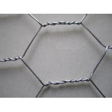 Galvanizado Hexagonal Wire Mesh / PVC Coated Hexagonal Wire Mesh