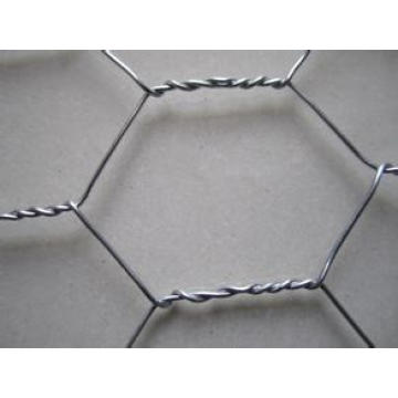 Galvanized Hexagonal Wire Mesh/PVC Coated Hexagonal Wire Mesh