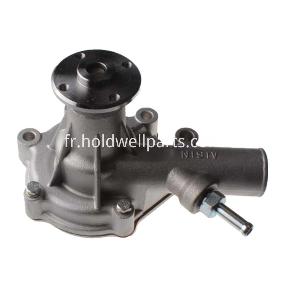 Holdwell Water Pump 145017951 Sba145017790 For Case