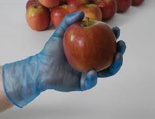 Disposable Food Glove