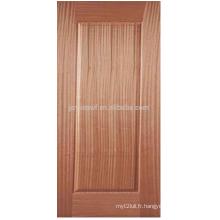 Paroi de porte en placage de bois JS001