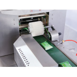 Automatic Pillow-type Packing Machine