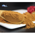 Extrait de racine de bardane poudre d'extrait de racine de bardane fraîche