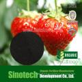 Humizone Plant Regulators: 90% Potassium Humate Powder (H090-P)