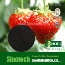Humizone Foliar Spry Fertilizante: 90% Humate Potasio en Polvo (H090-P)
