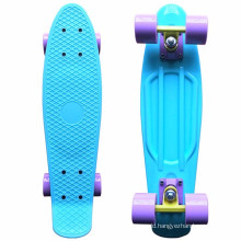 "Customizable Colors Pastel 22"" Four-wheel Mini Longboard Complete Skate Board"