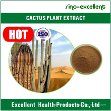 Weight Loss Cactus Plant Extract 10: 1