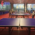 ITTF approuvé Tennis de table Sport sols intérieur